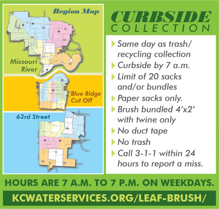 LeafandBrushregionsandrules-02
