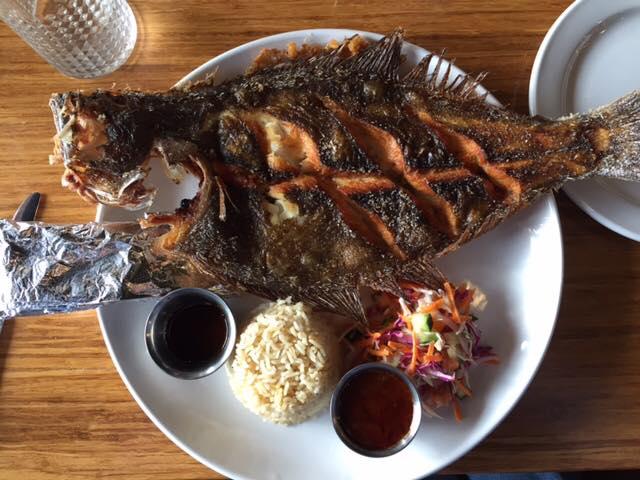 Jaracho fish1
