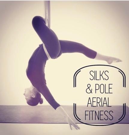 Silks & Pole