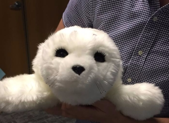 Shirley the seal 1
